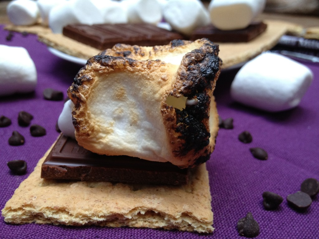 Silky Smooth S'mores Smoothie