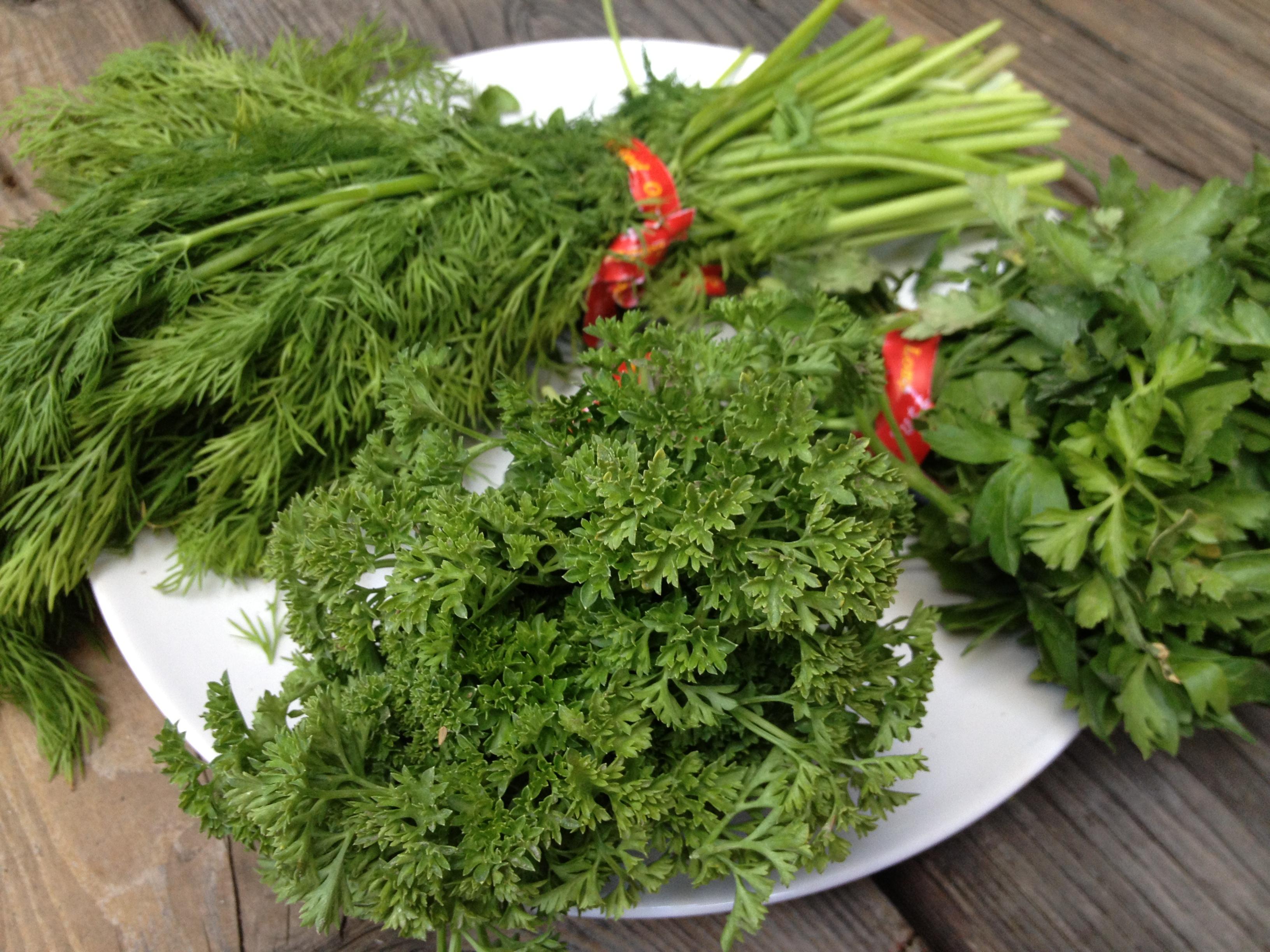 Moni Herbs